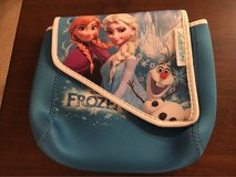 'Frozen' Bike Bag in Aurora, Illinois