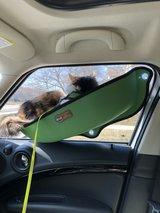 Small Dog or Cat window seat in St. Charles, Illinois