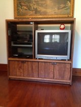 ENTERTAINMENT STAND WITH WORKING TV AND DVD PLAYER in Oswego, Illinois