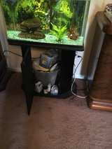 40 gallon fish tank with stand and accessories in Warner Robins, Georgia