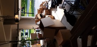 Free moving boxes must go asap in St. Charles, Illinois
