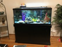 Fish Tank 70 Gallons in Algonquin, Illinois
