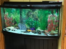 70 Gallon Fish Tank in Algonquin, Illinois