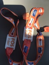 2 front of stage wristbands to see Steven Tyler at Rib Fest in Oswego, Illinois