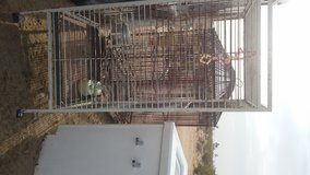 Iron birdcage in Yucca Valley, California