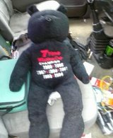 Dale Earnhardt Teddy Bear in Wilmington, North Carolina