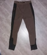 riding breeches size 36 in Stuttgart, GE
