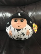 White sox Beanie Ballz in Glendale Heights, Illinois