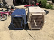 Dog kennels in Glendale Heights, Illinois