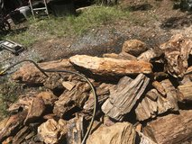 lots of Petrefied wood for sale in Fort Polk, Louisiana