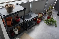Plants, Pots for Plants, Shelves for Plants, all the things for plants in Ramstein, Germany