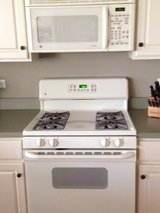 Gas Stove and Microwave in St. Charles, Illinois