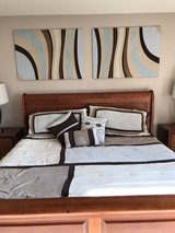 King bedding + 2 Pictures + accessories in Oswego, Illinois