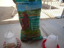 Poultry feeder and waterer with approx 30lb of layer feed in 29 Palms, California