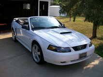 Mustang GT Convertable in Orland Park, Illinois