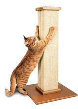 Pioneer Pet SmartCat The Ultimate Scratching Post in Bolingbrook, Illinois