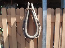 HORSE COLLAR in Orland Park, Illinois