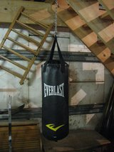 Punching Bag in Naperville, Illinois