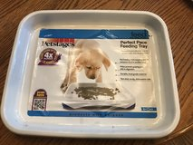 New Petstages Perfect Pace Feeding Tray in Glendale Heights, Illinois