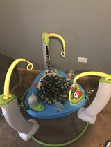Animal Jumperoo in Chicago, Illinois