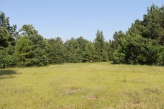 20 Acres in Leesville, Louisiana
