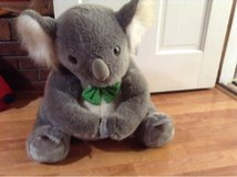 koala bear plush in Lawton, Oklahoma
