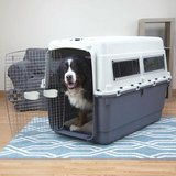 plastic dog crate in Fort Lewis, Washington