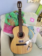 Giannina Guitar 2355-23 in Wilmington, North Carolina
