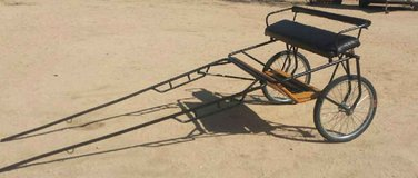 Horse Cart in Yucca Valley, California