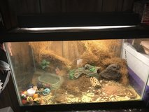 Hermit Crab aquarium / Light & accessories included in Quantico, Virginia