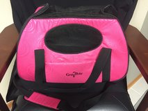 Small Pet Carrier in Chicago, Illinois