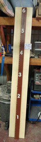 Wooden Growth chart in Houston, Texas