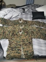 Marine Corps Woodland MARPAT in Fort Belvoir, Virginia
