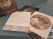 ANIMAL  SPIRIT KNOWLEDGE CARDS in Fort Carson, Colorado