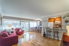 Gorgeous Newly Renovated 2 BR Apt in Fairfax, Virginia