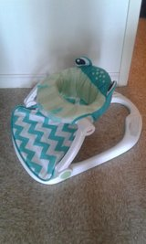 Fisher Price Baby Seat Frog in Fort Hood, Texas
