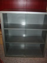 Metal and glass cabinet in Plainfield, Illinois