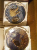 Collectibles plates in Fort Leonard Wood, Missouri