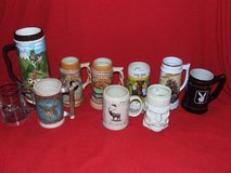 Stein Mug Collection Wyoming Tennessee Indian ++ Ceramic & Porcelain in Bolingbrook, Illinois