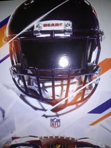 Chicago Bears Buffalo Bills 8/30 in Joliet, Illinois