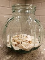 Large decorative glass container with sand & shells in Bolingbrook, Illinois