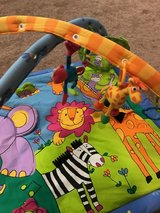 Bay's Multicolored Zoo Animal Themed Activity Gym in Palatine, Illinois