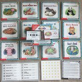 Scholastic Phonics Readers : Books 49-60 & 2 Cassettes in Okinawa, Japan