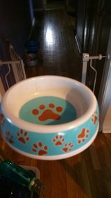 Small pet food bowl in Vacaville, California