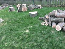 Free wood in Glendale Heights, Illinois