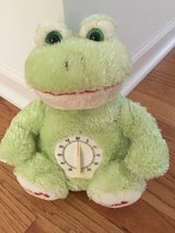Kids Time-Out Frog in Yorkville, Illinois