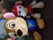 Paw patrol in Fairfield, California