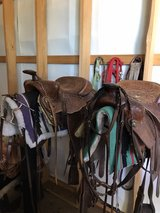 """two 16"""" saddles and all of tack in Fort Leonard Wood, Missouri"""