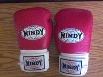 Windy Boxing Gloves in Yucca Valley, California
