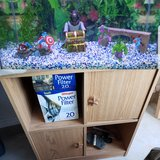 Fish Tank, Stand, Accessories in Fort Bliss, Texas